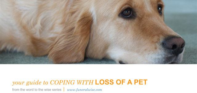 Guide to Coping with Loss of a Pet